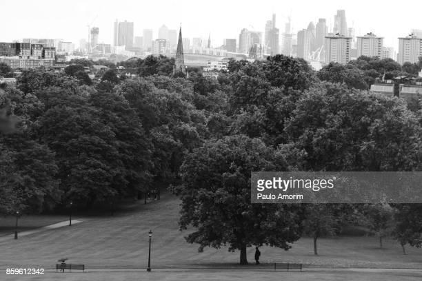 Albert Terrace Park in London
