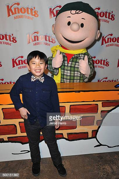 Albert Tsai attends Knott's Merry Farm Countdown to Christmas Tree Lighting at Knott's Berry Farm on December 5 2015 in Buena Park California