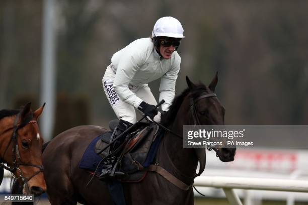Albertas Run ridden by AP McCoy has a run out during the Racing Plus Chase Day at Kempton Park Racecourse