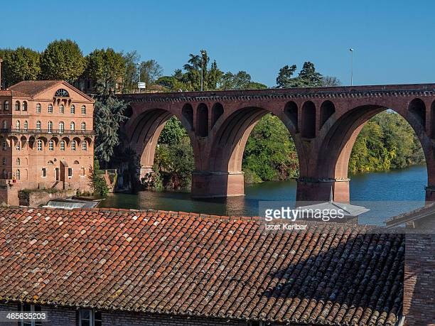 Albi view of the old city and the Tarn river