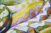 Albino python snake skin texture background close up