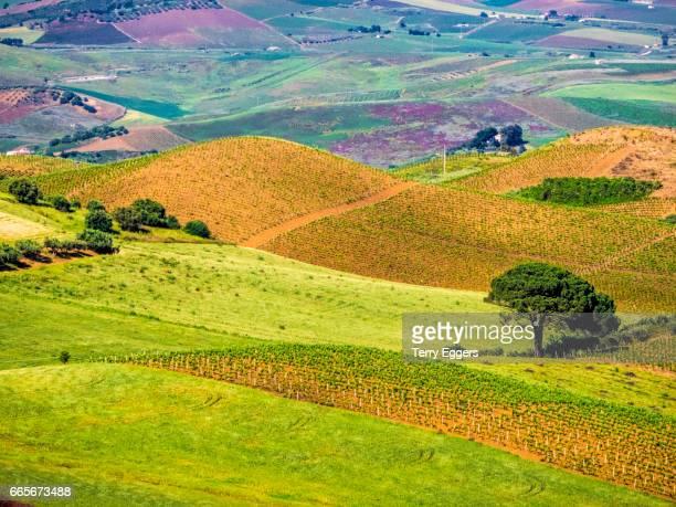 Alcamo countryside