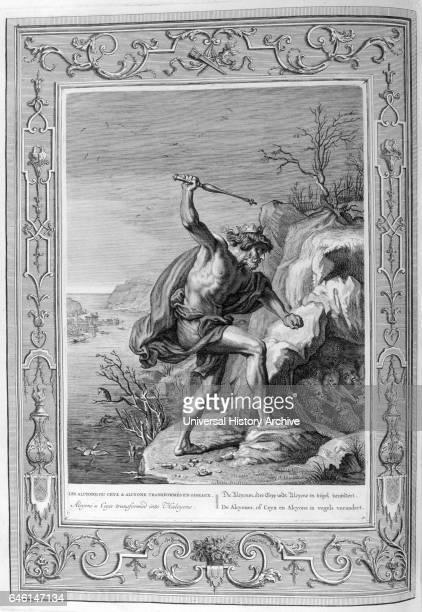 Alcyone Engraving from 'Tableaux du temple des muses' by Michel de Marolles known as the abbe de Marolles a French churchman and translator In Greek...