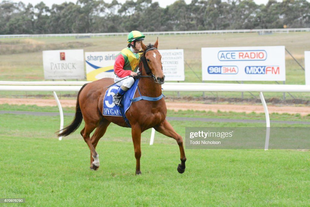 Aldo's Gold ridden by Holly McKechnie goes out for Hamilton Flooring Xtra BM58 Handicap at Hamilton Racecourse on April 21, 2017 in Hamilton, Australia.