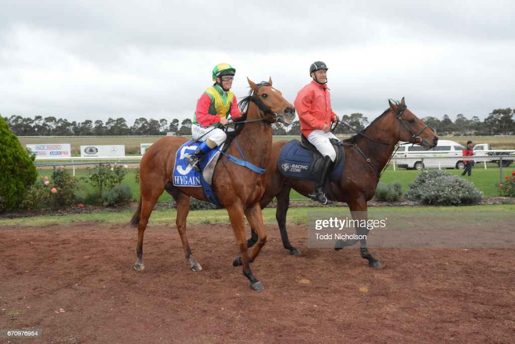 Aldo's Gold ridden by Holly McKechnie returns after Hamilton Flooring Xtra BM58 Handicap at Hamilton Racecourse on April 21, 2017 in Hamilton, Australia.