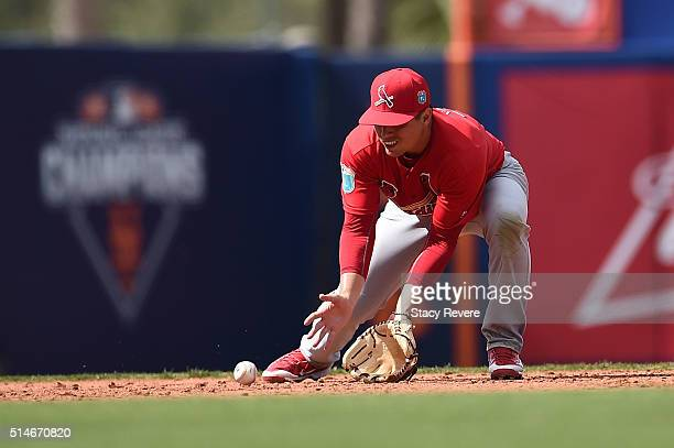 Aledmys Diaz of the St Louis Cardinals fields a ground ball during the fourth inning of a spring training game against the New York Mets at Tradition...