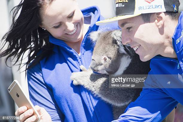 Aleix Espargaro of Spain and Team Suzuki ECSTAR makes a selfie with koala in paddock during previews ahead of the 2016 MotoGP of Australia at Phillip...