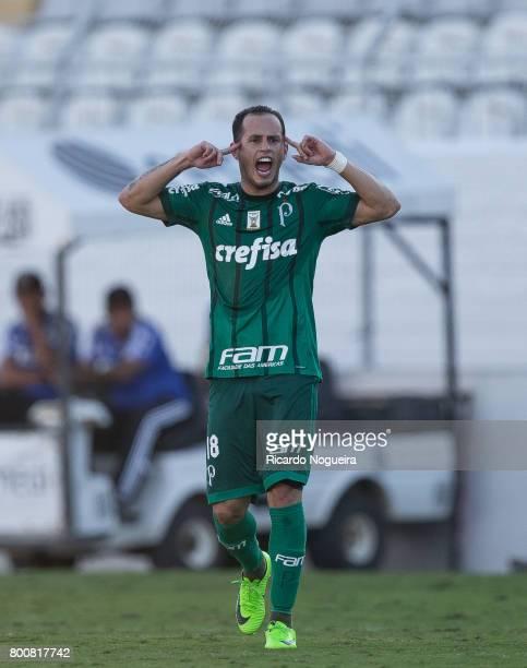 Alejandro Guerra of Palmeiras celebrates his team first goal during the match between Ponte Preta and Palmeiras as a part of Campeonato Brasileiro...