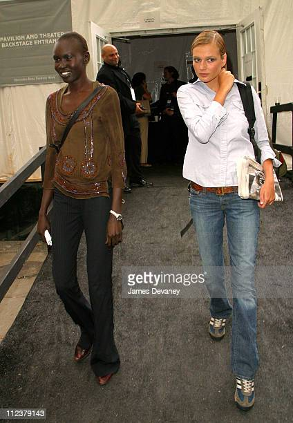 Alek Wek and Bridget Hall during MercedesBenz Fashion Week Spring Collections 2003 Celebrities at Bryant Park at Bryant Park in New York City New...