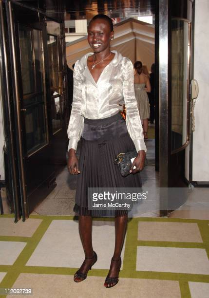 Alek Wek during 2006 CFDA Awards Red Carpet at New York Public Library in New York City New York United States