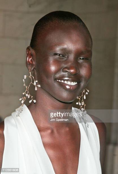 Alek Wek during 21st Annual CFDA Awards at NY Public Library in New York City New York United States