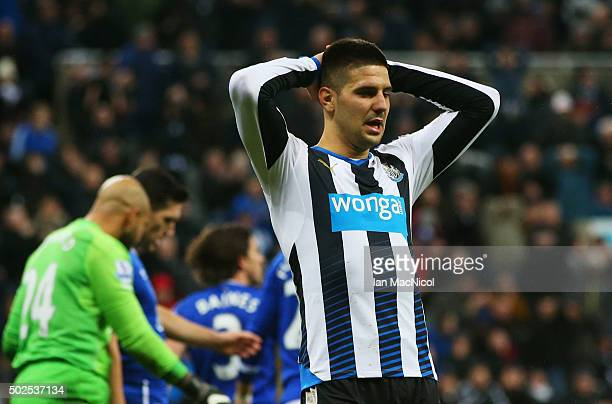 Aleksandar Mitrovic of Newcastle United reacts after a missed chance during the Barclays Premier League match between Newcastle United and Everton at...