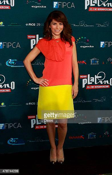 Alessandra Rosaldo attends the Platinum IberoAmerican Film Awards on March 132014 in Mexico City Mexico