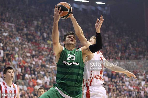 Alessandro Gentile #25 of Panathinaikos Superfoods Athens in action during the 2016/2017 Turkish Airlines EuroLeague Regular Season Round 20 game...