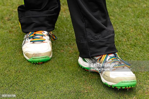 Alex Blackwell of the Thunder wears Zaidee's Rainbow laces during the Women's Big Bash League match between the Sydney Sixers and the Sydney Thunder...