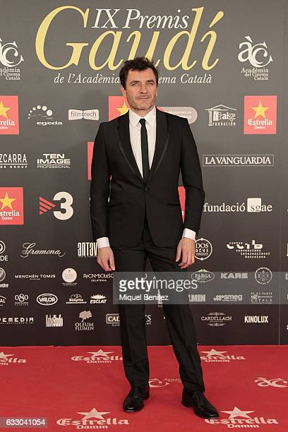 Alex Brendemuhl attends the IX Gaudi Awards 2016 at the Forum's Auditori on January 29 2017 in Barcelona Spain