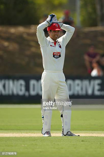 Alex Carey of the Redbacks shows his frustration during day four of the Sheffield Shield match between New South Wales and South Australia at Coffs...