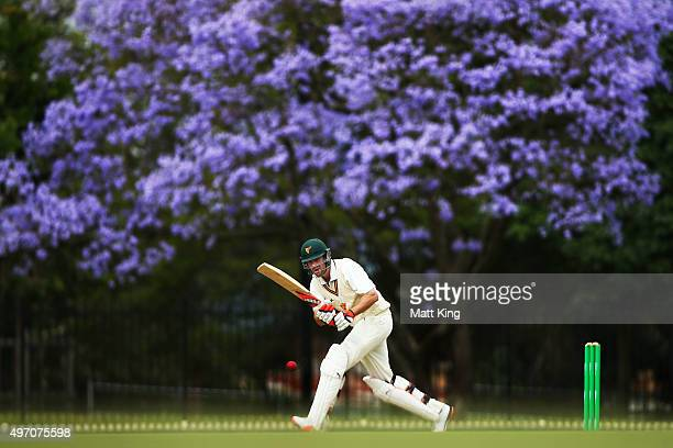 Alex Doolan of the Tigers bats during day one of the Sheffield Shield match between New South Wales and Tasmania at Bankstown Oval on November 14...