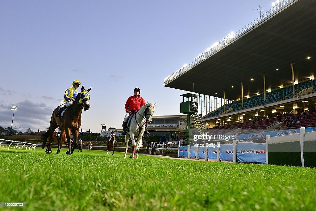 Alex Forbes (L) returns after winning aboard Ready As Elle in the Essendon Mazda 55 Second Challenge Heat 11 during Melbourne racing at Moonee Valley Racecourse on January 25, 2013 in Melbourne, Australia.