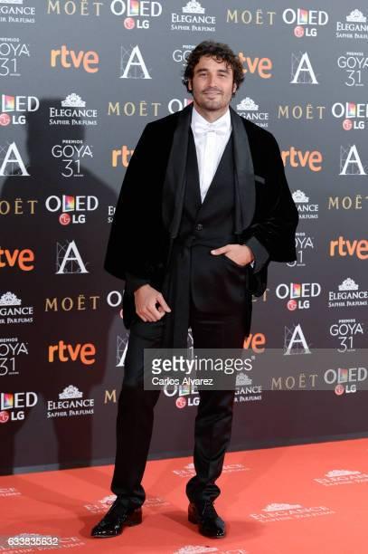 Alex Garcia attends Goya Cinema Awards 2017 at Madrid Marriott Auditorium on February 4 2017 in Madrid Spain
