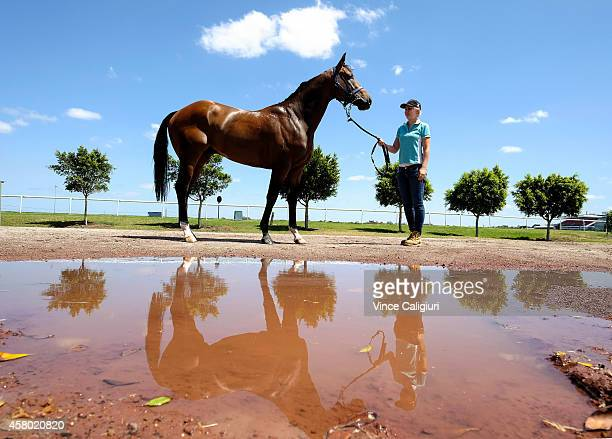 Alex HansfordSmith poses with Victoria Derby favourite Hampton Court at Flemington Racecourse on October 29 2014 in Melbourne Australia