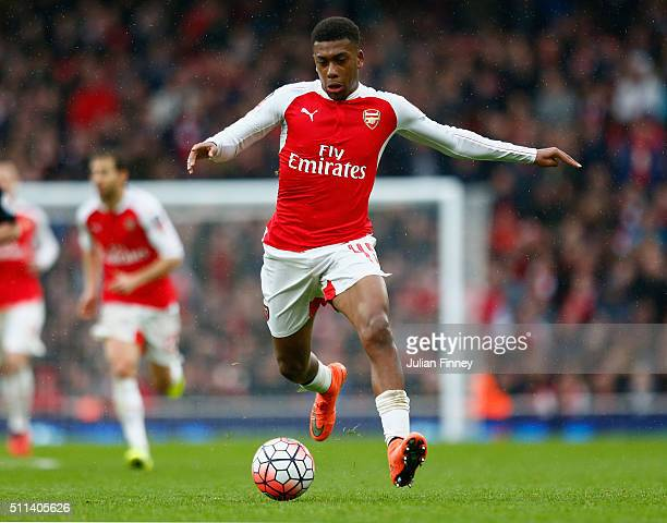 Alex Iwobi of Arsenal in action during the Emirates FA Cup fifth round match between Arsenal and Hull City at Emirates Stadium on February 20 2016 in...