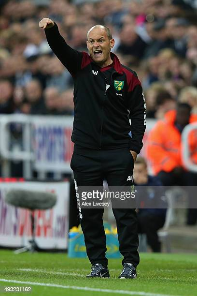 Alex Neil manager of Norwich City gestures during the Barclays Premier League match between Newcastle United and Norwich City at St James' Park on...