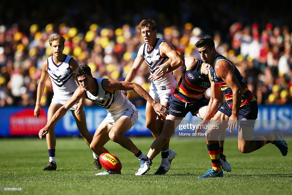 Alex Pearce of the Dockers competes for the ball with Taylor Walker of the Crows during the round six AFL match between the Adelaide Crows and the Fremantle Dockers at Adelaide Oval on April 30, 2016 in Adelaide, Australia.