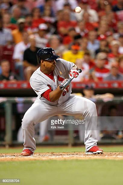 Alex Reyes of the St Louis Cardinals bunts the ball during the game against the Cincinnati Reds at Great American Ball Park on September 2 2016 in...