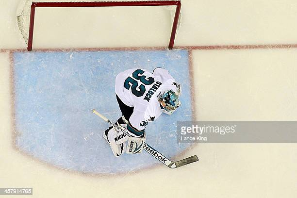Alex Stalock of the San Jose Sharks protects the net against the Carolina Hurricanes at PNC Arena on December 6 2013 in Raleigh North Carolina The...