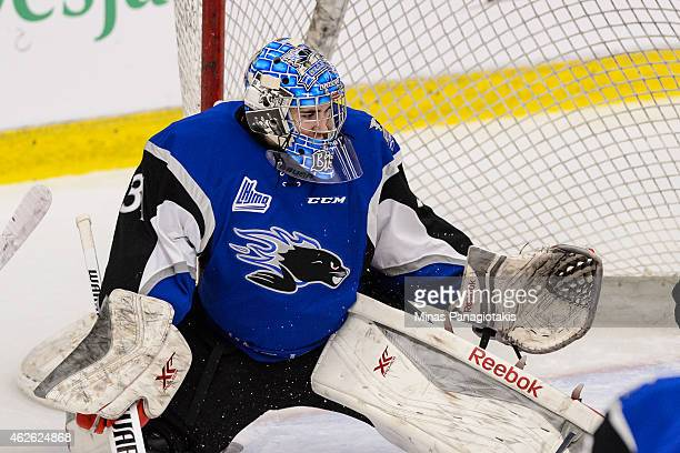 Alexander Bishop of the Saint John Sea Dogs gets into position during the QMJHL game against the BlainvilleBoisbriand Armada at the Centre Excellence...