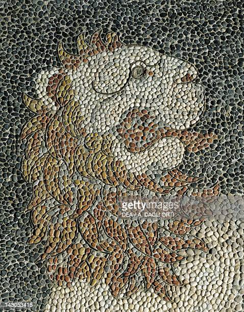 Alexander the Great and Hephaestion during a lion hunt ca 320 BC mosaic in peristyle house 1 Room C Pella Greece Detail showing a lion 4th Century BC...