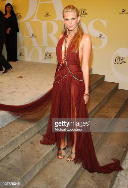 Alexandra Richards during 2005 CFDA Fashion Awards Arrivals at The New York Public Library in New York City New York United States