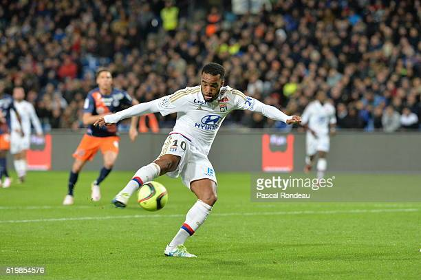 Alexandre Lacazette of Lyon in action during the Ligue 1 match between Montpellier Herault SC and Olympique Lyonnais at Stade de la Mosson on April 8...