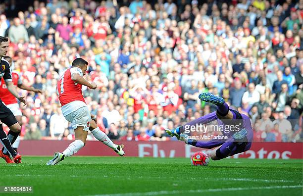 Alexis Sanchez shoots past Watford goalkeeper Heurelho Gomes to score for Arsenal during the Barclays Premier League match between Arsenal and...