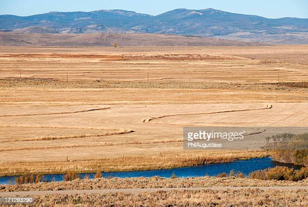 Alfalfa field and river in Wyoming