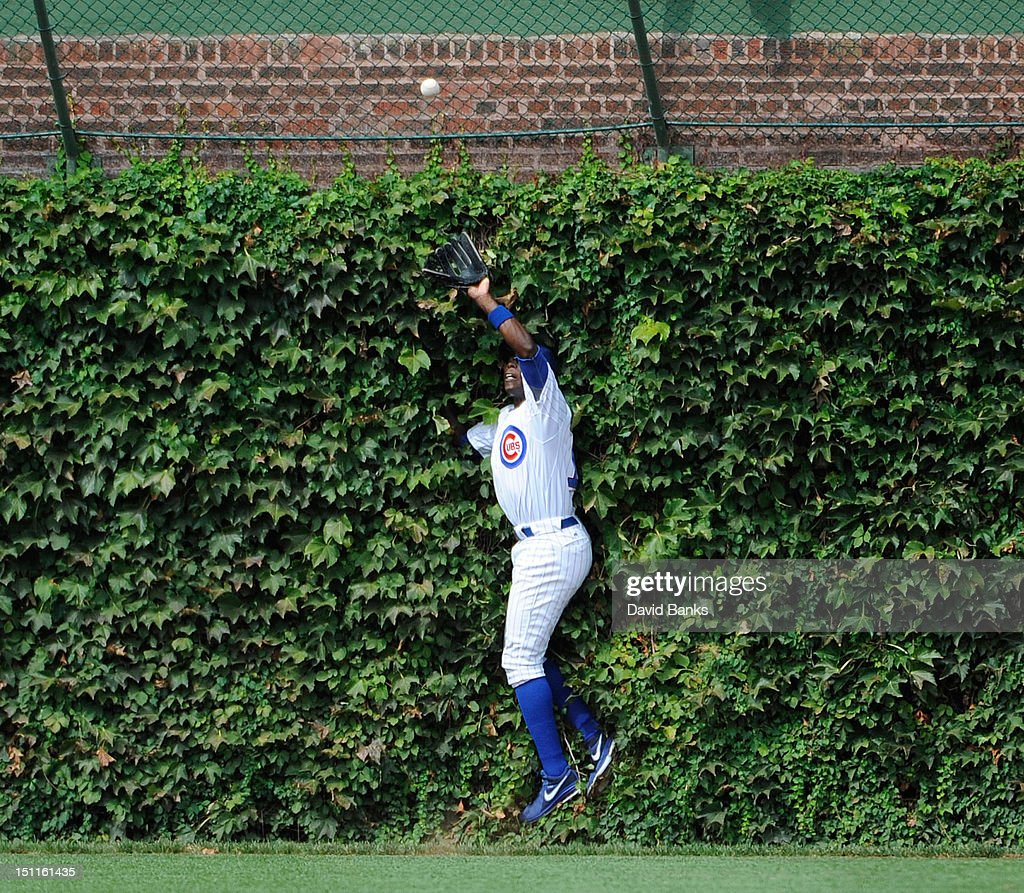 <a gi-track='captionPersonalityLinkClicked' href=/galleries/search?phrase=Alfonso+Soriano&family=editorial&specificpeople=202251 ng-click='$event.stopPropagation()'>Alfonso Soriano</a> #12 of the Chicago Cubs makes a catch against the San Francisco Giants in the fourth inning on September 02 2012 at Wrigley Field in Chicago, Illinois.