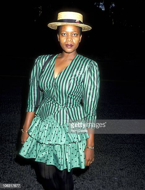 Alfre Woodard during Ted Field Hosts A Political Fundraiser at Ted Field's Estate in Beverly Hills California United States