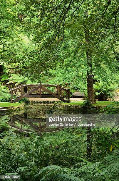 Alfred Nicholas Gardens, Dandenong Ranges National Park, Dandenong Ranges, Victoria, Australia, Pacific