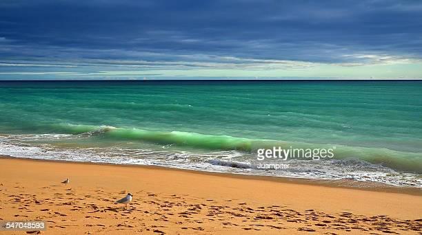 Algarvian seashore