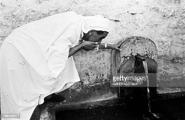 Algiers Algérie Alger 14 avril 1970 vie quotidienne dans la capitale la plus grande ville du pays et ville côtière de la mer Méditerranée Ici dans la...