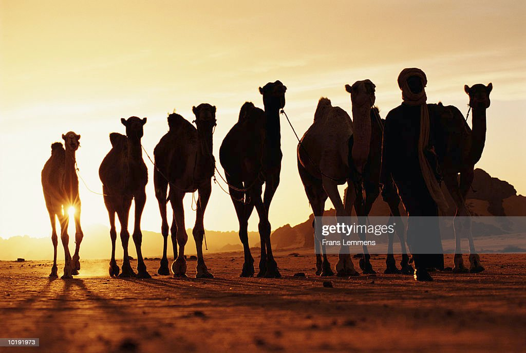 <b>Sahara-desert</b> Stock Footage Video - Shutterstock