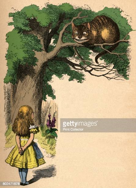 Alice and the Cheshire Cat' 1889 Lewis Carroll's 'Alice in Wonderland' as illustrated by John Tenniel From Alice's Adventures in Wonderland by Lewis...