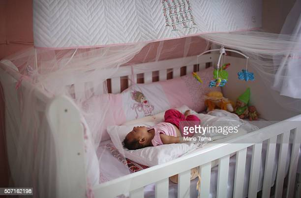 Alice Vitoria Gomes Bezerra 3monthsold who has microcephaly sleeps in her crib on January 27 2016 in Recife Brazil In the last four months...