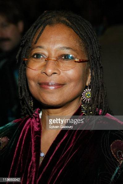 alice walker the color purple pdf