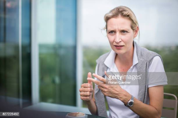Alice Weidel campaign leader of Germany's rightwing populist Alternative for Germany party for the next German general election is pictured during an...