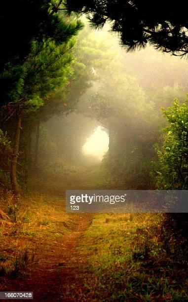 Alice's Exit