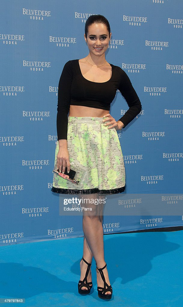 Alicia Sanz attends Belvedere Vodka party photocall at Principe Pio train station on March 20, 2014 in Madrid, Spain.