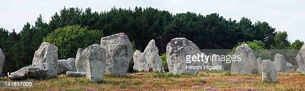 Alignments of Megalitic standing stones, Carnac, Morbihan, Brittany, France