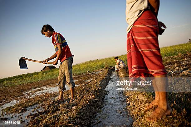 All around the outskirts of the nature reserve Kaziranga National Park live farmers who are often in conflict with the wild animals that live in the...